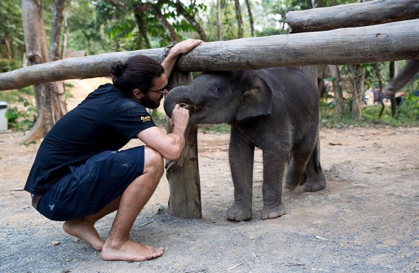 Phang Nga Elephant Park, Phang Nga.jpg