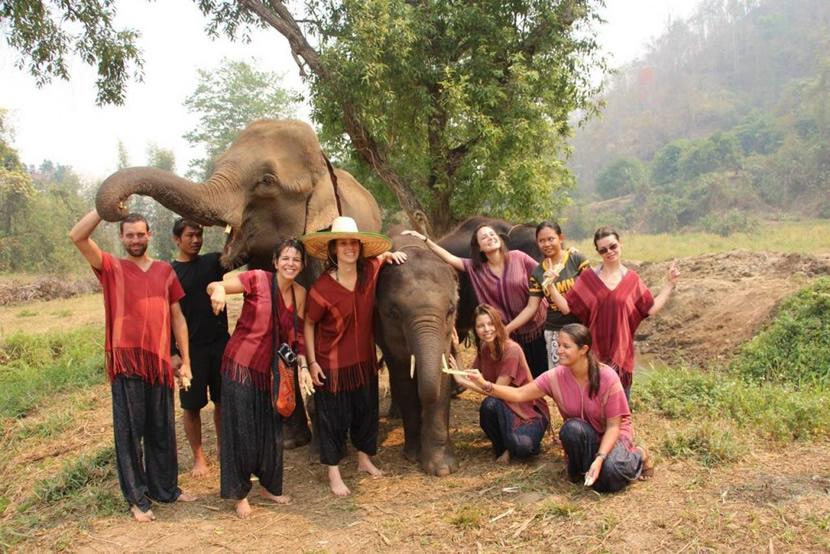 Trekking with elephants.