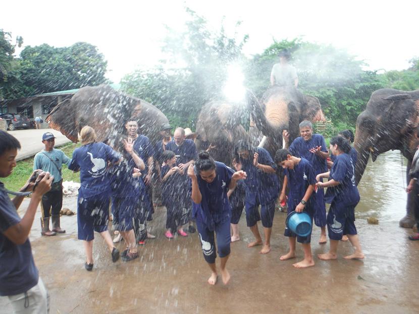 Baanchang Elephant Park.jpg