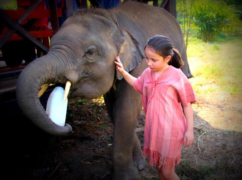 Ran Tong elephant care center.jpg