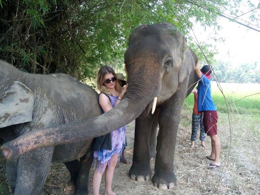 Elephant Family Sanctuary.jpg
