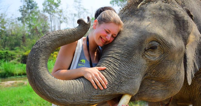 Elephant Retirement Park.jpg