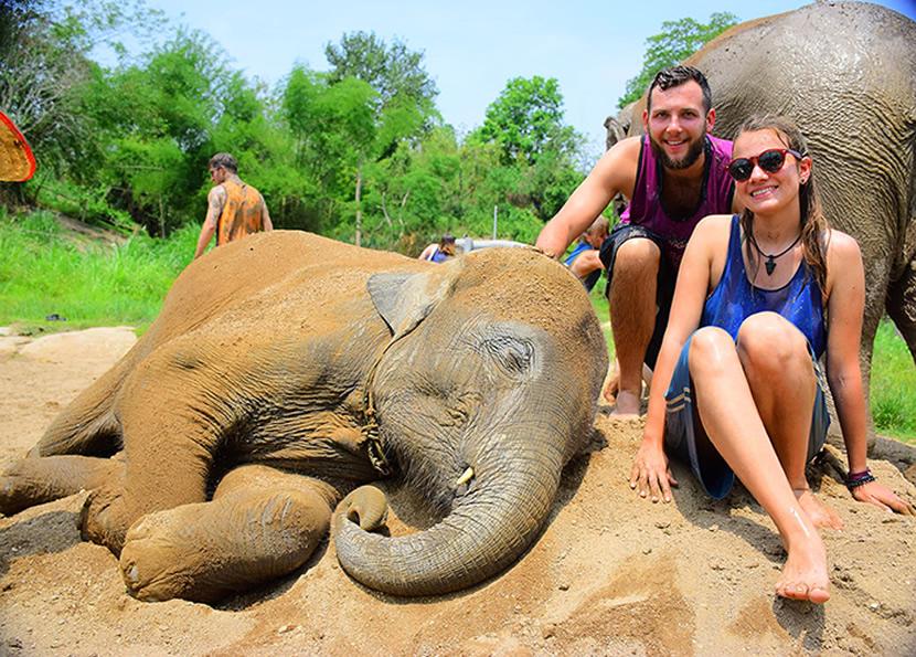 Elephant Retirement Park Phuket.jpg