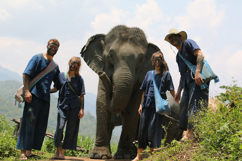 Thai Elephant Home.jpg
