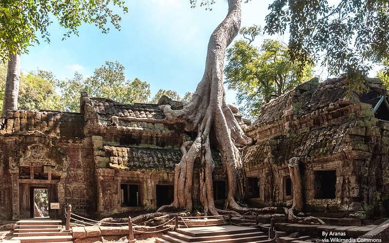 Angkor_SiemReap_Cambodia_Tha-Prom-Temple-01_副本.jpg