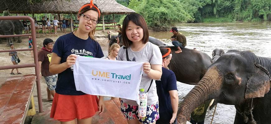 Encounter Elephants in Thailand