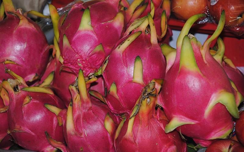 Chathaburi Fruit Anniversary