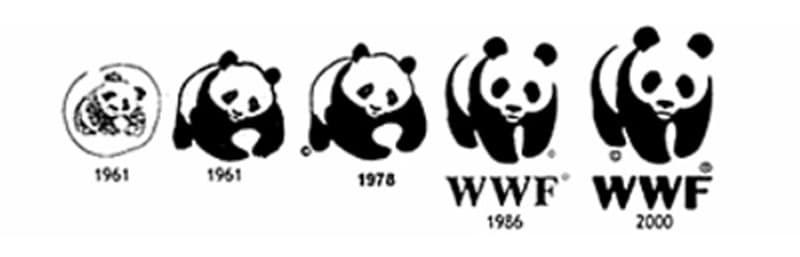 giant panda4.jpg