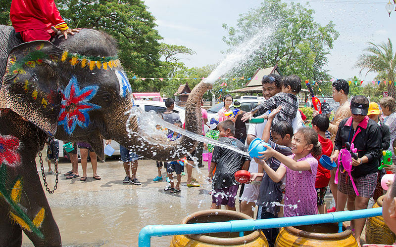 Play with elephant in Songkran Festival