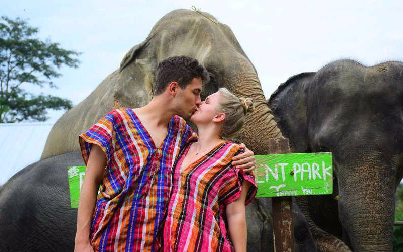Sweet Time - very hands-on ethical experience with Elephants!