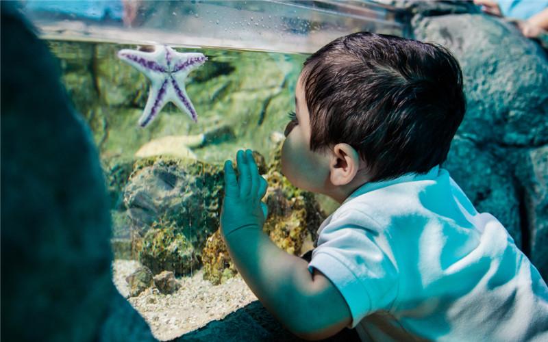 Phuket Aquarium.jpg