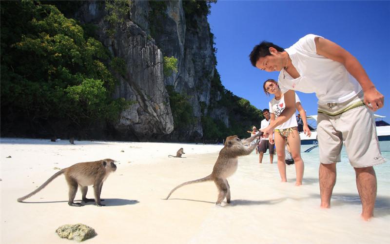 Phi Phi Monkey Beach.jpg