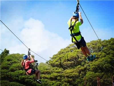 Samui Jungle Cable Ride