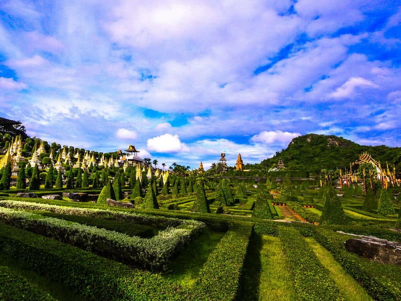 Nong Nooch Village Half Day Tour from Pattaya with Lunch
