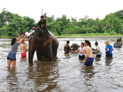 Highlights of Thailand & Elephant Eco Tour