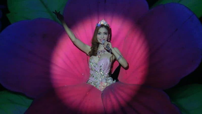Tiffany Cabaret Show.JPG