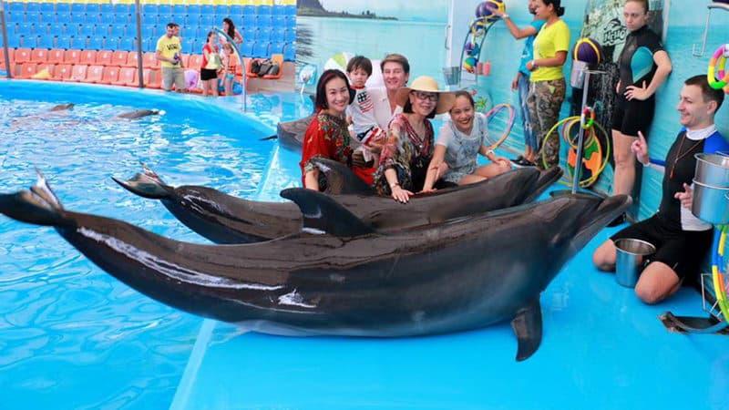 Dolphins Bay Nemo Phuket.jpg