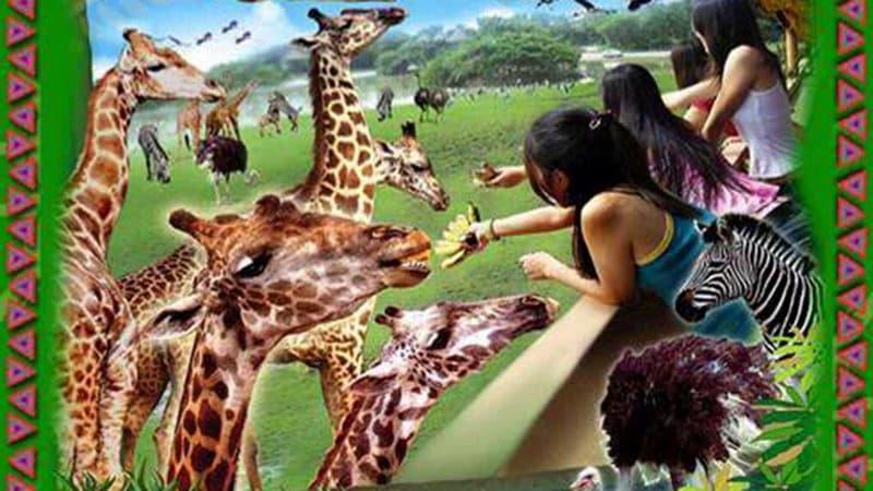 Safari World bangkok.jpg