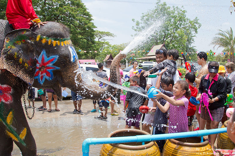 Elephant splashing water to the crowd.