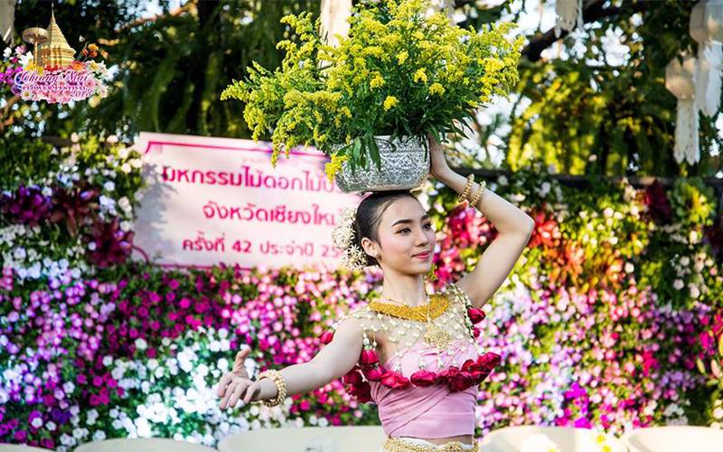 Miss Chiang Mai Flower Festival: How to Entertain Yourself in the Seduction of Flowers