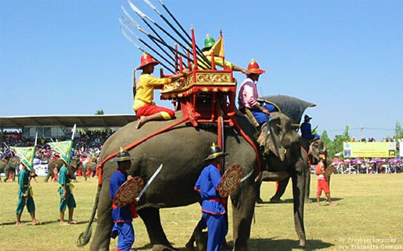 Surin Elephant Round-up