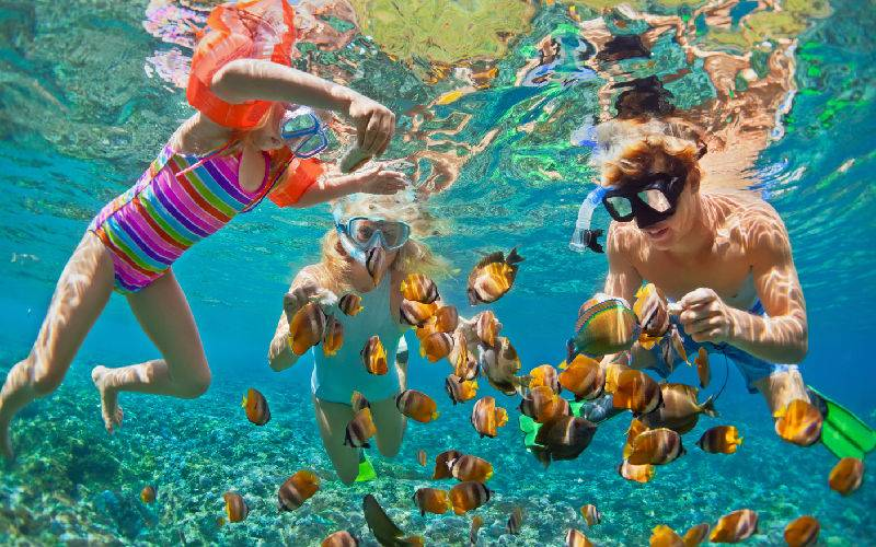 Top 5 Kids' Activities in Phuket