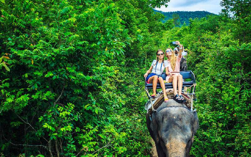 Top 10 Best Family Activities in Chiang Mai