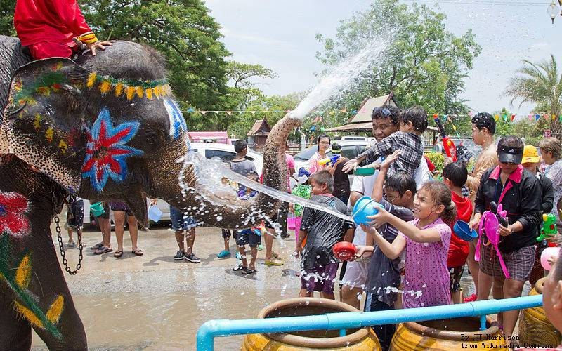 Thai people splashs water to holy elephant to show their respect.