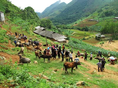 Trung Do village
