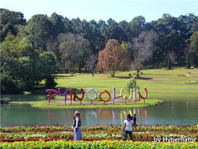 Pyin Oo Lwin Nursery