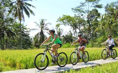 Mount Batur Cycling